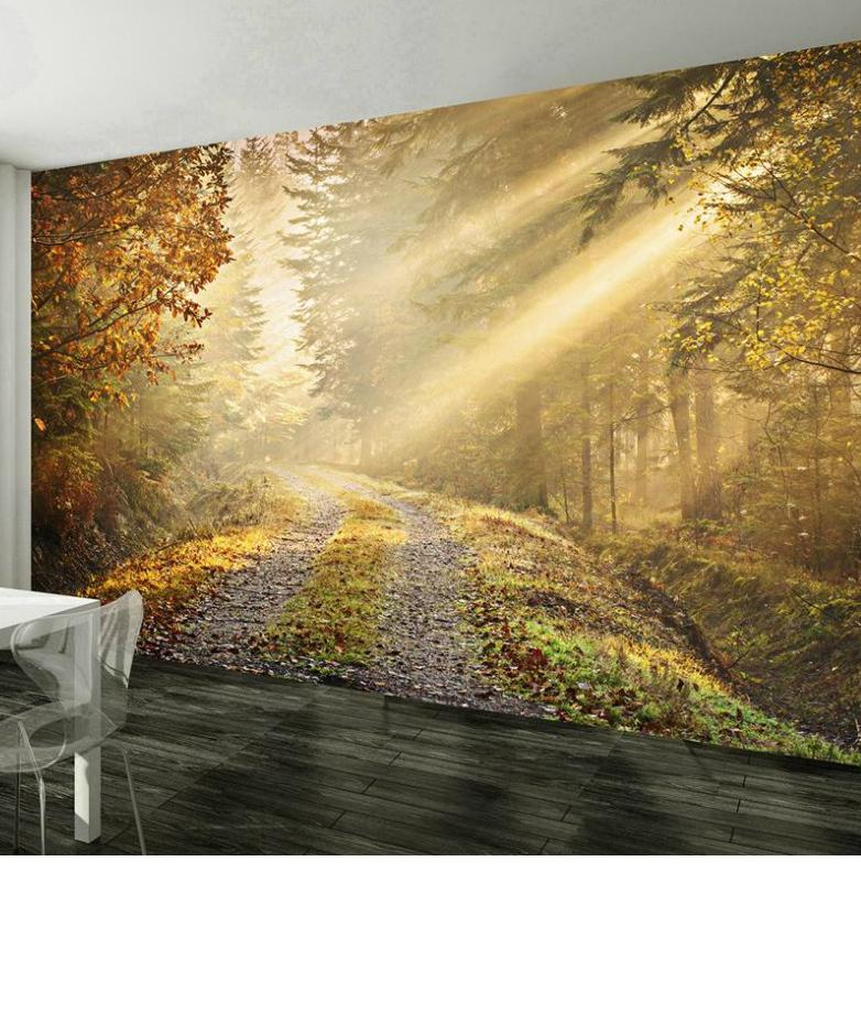 Autumn forest wall mural for Autumn forest wall mural